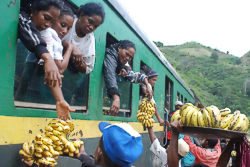 The train Manakara-Fianarantsoa is the lifeblood of the entire region (Madagascar)