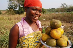 Mutual accountability for the people (photo: fruit vendor in Ghana)