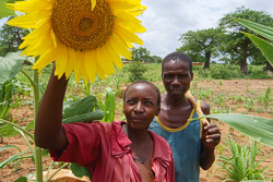 Budget support aims at improving the 